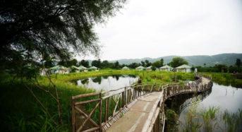 Vanaashrya – Where Nature Meets You!