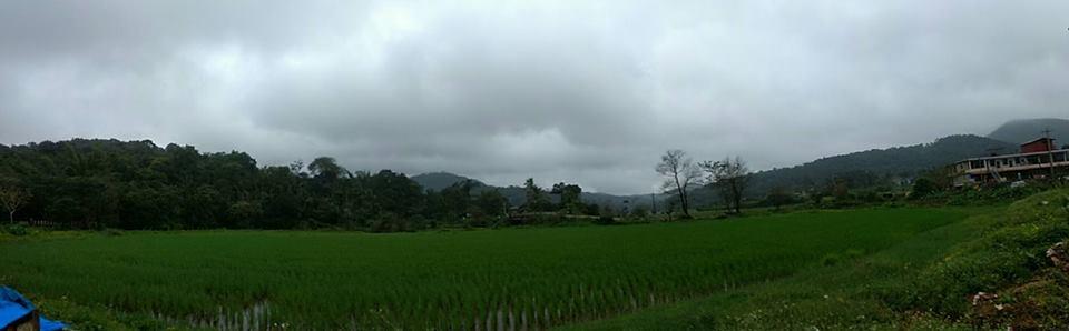 scenery-1
