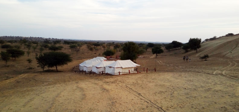 Desert Camp, Jodhpur
