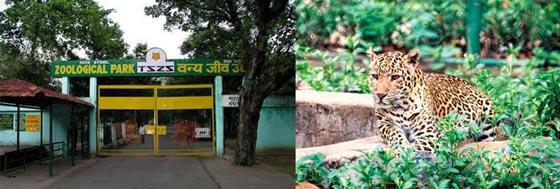 Jamshedpur Tata Steel Zoological Park