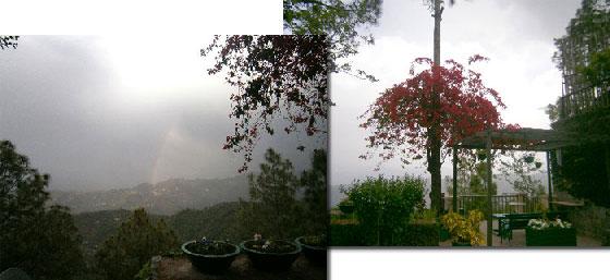Beautiful View of Kasauli at 7 Pines Hotel