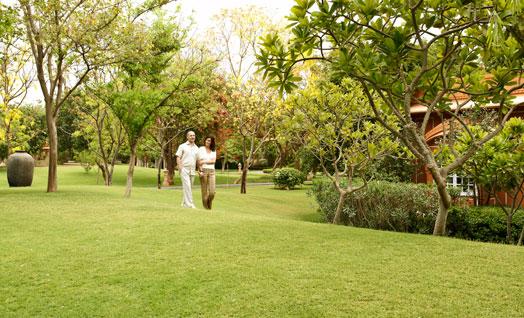 Leisurely-walk-in-the-gardens