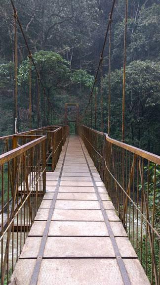 abbey-falls-bridge