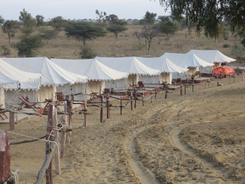 Desert Camp Jodhpur