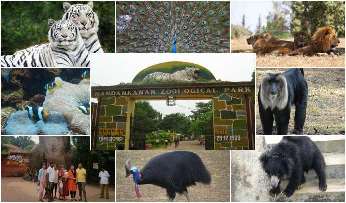 Nandankanan Zoological Park (TravelRasoi)