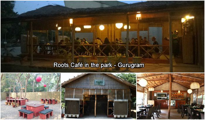 Roots Cafe in the park Gurugram