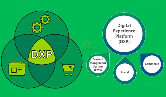 Digital Experience Platform (DXP)