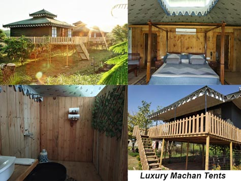 Luxury Machan Tents, Maa Ashapura Farm
