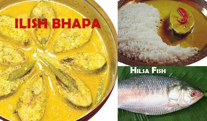 ILISH BHAPA Hilsa Fish