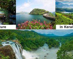 Nature in Kerala